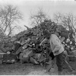 12 Bucking Wood-1.jpg