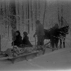 14 Marion on horse drawn sled-1.jpg