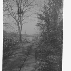 15 Spring Lake two with road-1.jpg
