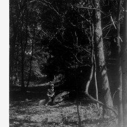 16 Roscoe in the Woods-1.jpg