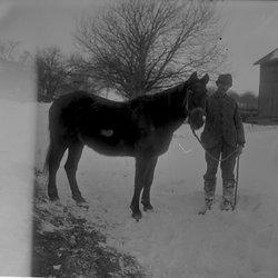 19Man holding horse WST Farm-1.jpg