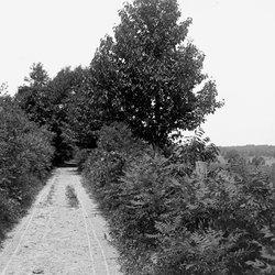 19 Road-1.jpg