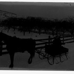 3 Buck and Ann  Horse and Wagon-1.jpg
