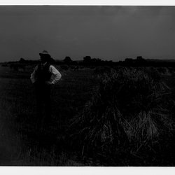 4 Henry S Elting rye ields-1.jpg