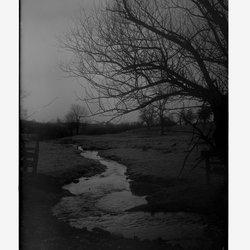 4 Meadowbrook-1.jpg