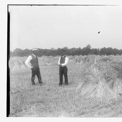 5 Eltings Rye Fields-1-1.jpg