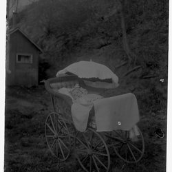 8 Baby in Carriage-1.jpg