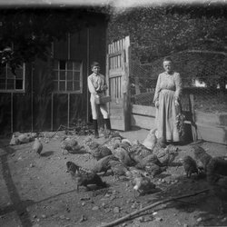 9 Helen Knickerbocker, Roscoe and Chickens-1.jpg