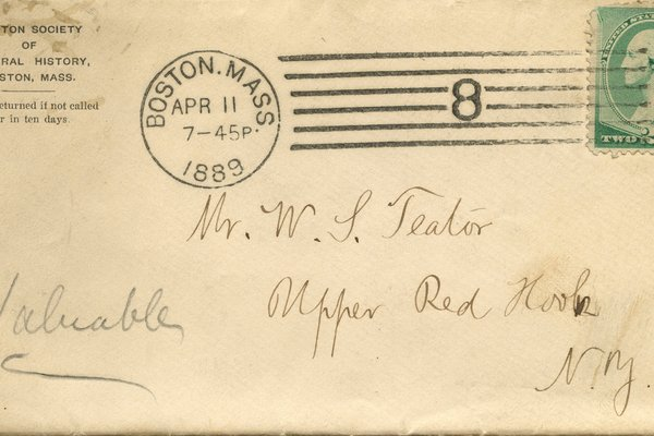 Letter from Saul Nemhew* to W. S. Teator Envelope